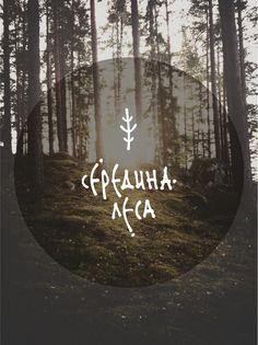 Середина Леса