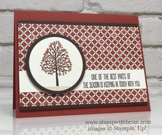 Totally Trees, Better Together, Moroccan Designer Series Paper, Stampin' Up…