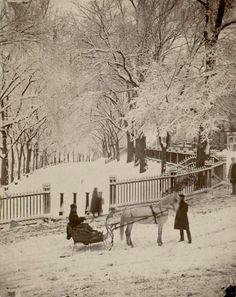 Boston Common, 1875