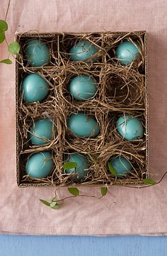 Faux robin eggs #anthroregistry