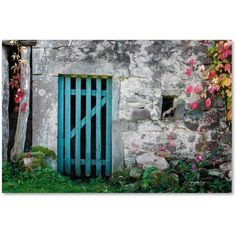 Trademark Fine Art The Old Wooden Door Canvas Art by Philippe Sainte-Laudy, Size: 22 x 32, Multicolor