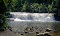 DuPont State Forest: Hooker Falls-This is a popular spot for wading and swimming in the Casade Lake at the foot of the 11-foot waterfall. Shortly from Hooker Falls, if follow the trail upstream  you will find the more impressive Triple Falls and High Falls.
