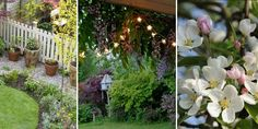 Garden ideas on a budget: 5 easy projects outdoors