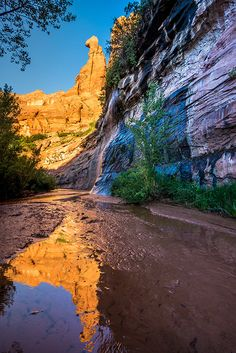 Coyote Gulch Sunrise, Grand Staircase Escalante, Utah Photography, Utah Landscape, Wall Art, Southwest Art, Fine Art Photo Print, Nature by Ultimateplaces on Etsy