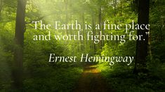 Save Our Earth, Save The Planet, Save Nature Quotes, Forest Quotes, Environmental Posters, Environment Quotes, Bamboo Products, Saving Quotes, World Quotes