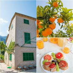 Mallorca Food & Travel Guide Sóller Ecovinyassa Feed me up before you go-go