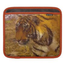 Stalking Tiger Wildlife Fine Art iPad Sleeve