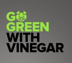 Gina Dinezza wants to clean the windows with a green solution, vinegar. Is it as good cleaning windows and other surfaces as windex? Dan Miller is trying out vinegar as a cleaning agent in the home too.