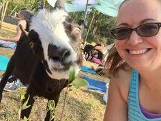 Baby Goat Yoga at Orlando's Wildflower Farm