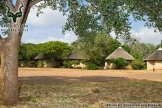 KNP - Satara - General Country Roads, Camping, Park, Plants, Campsite, Parks, Plant, Campers, Tent Camping