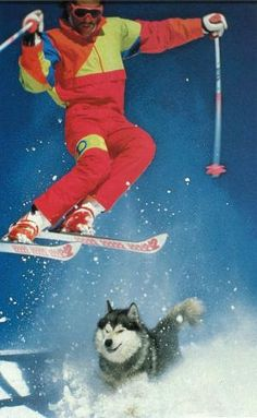 Zudnick, the wonder dog. from our 1989 film Escape To Ski.  warrenmiller.com