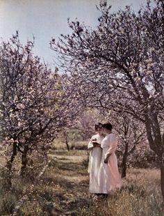 Les Frères Lumière / Autochrome / Jeunes filles et pommiers en fleur (1906-1907) vintage fashion style turn of the century 00s 10s white day garden dresses color photo print