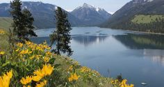 Wallowa Lake State Park, South of Joseph  OREGON Lots to do: swimming, boating, fishing, and a gondola tramway (from $24) that runs to the top of 8,150-foot Mt. Howard. Insider tip: Visit the nearby town of Joseph, famous for its bronze castings.  Best for: First-timers; families 800-452-5687