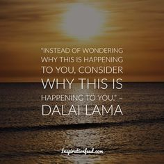 Learn the wisdom and message of compassion of the Dalai Lama. Here are the best Dalai Lama quotes compiled for you. Spiritual Teachers, Religious Education, Compassion Quotes, 14th Dalai Lama, Buddhist Philosophy, Nobel Peace Prize, Helping Others, Forgiveness, Religion