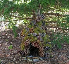 A Fairy House made of cones and moss.