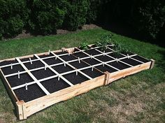 Square Foot Gardening: How to set up your own backyard vegetable garden (and some pics of mine)