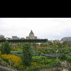 Le Chateau de Villandry, Loire Valley, Tours, France