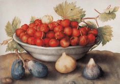 Painter Italian Giovanna Garzoni (1600, Ascoli Piceno, Italy - 1670, Rome)