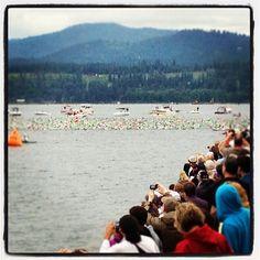 #IMCDA Swim Start, holy crap