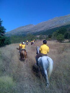Maneggio sul Gran Sasso. Un'ora a cavallo nel maneggio o, per i più esperti, una bella passeggiata nei boschi. Hotel Fiordigigli Assergi (L'Aquila) Abruzzo