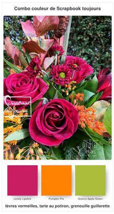 #4 Combo COULEUR de Scrapbook toujours Stampin Up, Scrapbook, Pumpkin, Rose, Flowers, Plants, Color, Pumpkins, Pink
