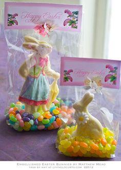 What a fun idea for chocolate Easter bunnies.  Better than a cardboard box.