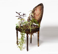 Take a cue from Sao Paulo-based artist Rodrigo Bueno, whose work was recently featured on Design Boom, and grow plants right in your furniture.
