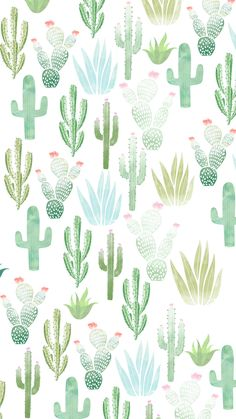 20 cutest wallpaper cactus for your iphone wallpaper 29 - SalmaPic Iphone Wallpaper Green, Phone Wallpaper Images, Plant Wallpaper, Summer Wallpaper, Iphone Background Wallpaper, Aesthetic Iphone Wallpaper, Aesthetic Wallpapers, Phone Wallpapers, Watercolor Wallpaper