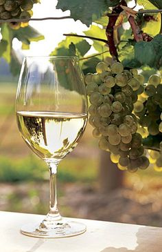 The New Summer Whites: Exciting, Completely Delicious Warm Weather Wines #CraveLocal #winereviews