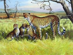 Gepard Big Cats Art, Cat Art, Africa Painting, Cheetahs, Italian Artist, Leopards, Wildlife Art, Painting & Drawing, Fine Art America