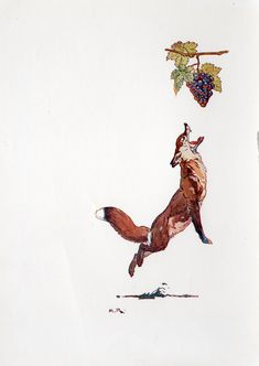 """Fox and Grapes, """"Aesop's Fables"""" - Harry Rountree."""