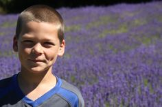 Field upon field of lavender. Family Travel, Lavender, Salt, Island, Adventure, Spring, Family Trips, Islands, Adventure Game