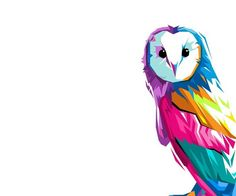 Hedwig in color
