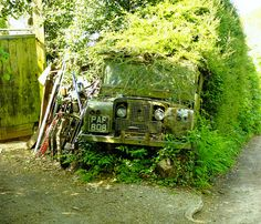LandRover Hedge