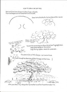 Manga Drawing Techniques How to Draw Worksheets for The Young Artist: How to Draw an Oak Tree, Drawing Worksheet For You. Nature Drawing, Plant Drawing, Painting & Drawing, Drawing Trees, Drawing Lessons, Drawing Techniques, Art Lessons, Realistic Drawings, Easy Drawings