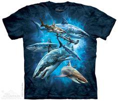 XL SHARK WEEK Youth Shark T Shirt  S L M
