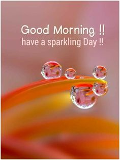 Are you looking for images for good morning handsome?Check this out for cool good morning handsome ideas. These unique images will make you happy. Good Morning Friends Quotes, Good Day Quotes, Morning Greetings Quotes, Morning Inspirational Quotes, Good Morning Messages, Morning Quotes, Morning Memes, Weekend Quotes, Good Morning Beautiful Pictures