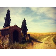 Film Like Landscape: We were driving a lot across Tuscany and we always took the smaller roads to enjoy the landscape and to be able to stop and admire the nature and take photos. One day we were driving when I saw this small cottage like bus stop with the ceder trees on the side. It was very film like. #travel #italy