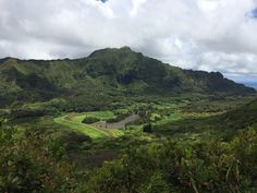 View from Aihualama trail overlooking Nuuanu Pali.