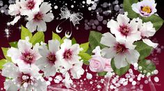 Flower Wallpaper, Cool Wallpaper, Elegant Flowers, High Quality Wallpapers, Hd Desktop, Floral Wreath, Framed Prints, Wreaths, Floral Backgrounds