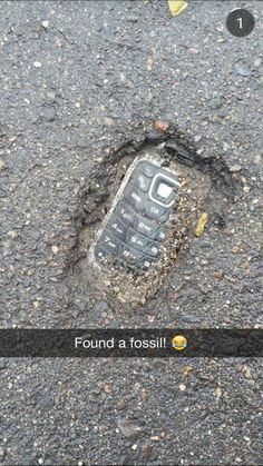 found -Fossil found! found - 30 Try Not To Laugh At These Hilarious Meme Pictures Funny Memes - Funny animals have always been an internet sensation. They've got what it takes to make us laugh, especially when . Crazy Funny Memes, Really Funny Memes, Stupid Funny Memes, Funny Relatable Memes, Haha Funny, Funny Posts, Funny Quotes, Funny Stuff, Funny Work