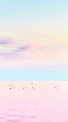 this is an beach in rainbow color with a few birds migrating of the sand. These are only neon color not including the birds in the pic. One of the birds are flying