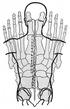 Excellent map of how the spine/body overlays the hand in reflexology. - Excellent map of how the spine/body overlays the hand in reflexology. Excellent map of how the spine/body overlays the hand in reflexology. Massage Tips, Good Massage, Massage Therapy, Sciatica Pain Treatment, Acupressure Treatment, Reiki, Acupuncture Benefits, Massage Benefits, Reflexology Massage