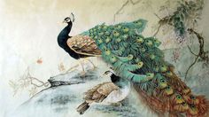 Image result for peacock painting