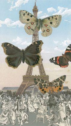 Peter Blake - butterflies I, The Paris Suite - at Paul Stolper