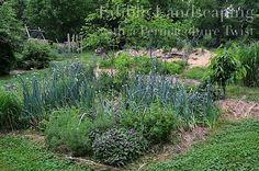 Edible Landcaping