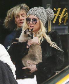 Oh, Just Ke$ha And Her Cat Walking Around New York City