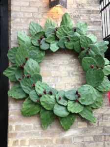 Cactus Christmas Wreath ... San Antonio Texas