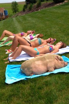 No better picture sums up what I feel like when I'm with my friends at the beach...bahaha