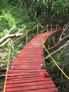 El puente peatonal de madera reciclada más largo del mundo